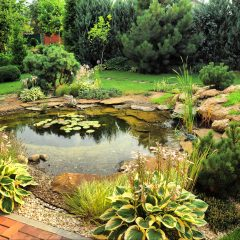 Tips For Making Your Backyard Garden Awesome